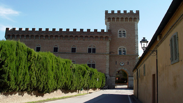 bolgheri wine tour