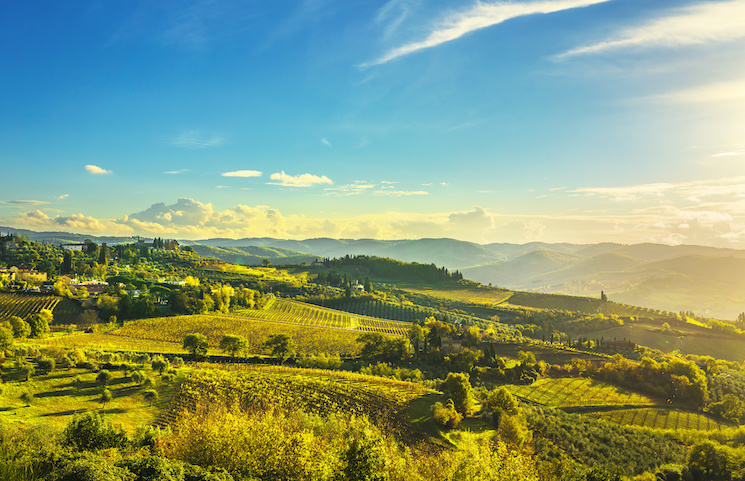 Chianti private full day tour