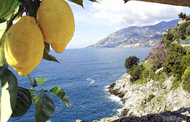 Sorrento, Positano and Pompeii private full day tour